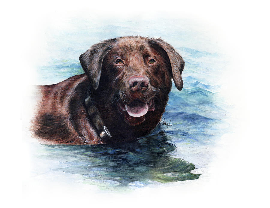 Chocolate Lab by Patrice Clarkson