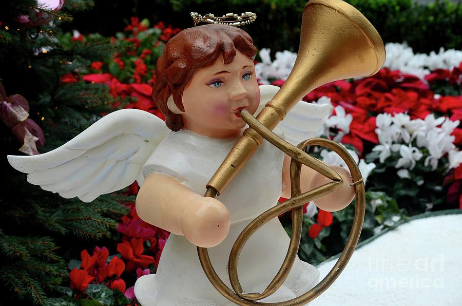 Christmas Angel Statue Plays French Horn Trumpet Brass Music Instrument Photograph