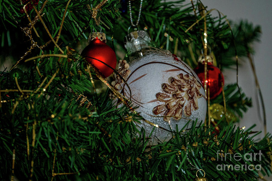Christmas  by Annerose Walz
