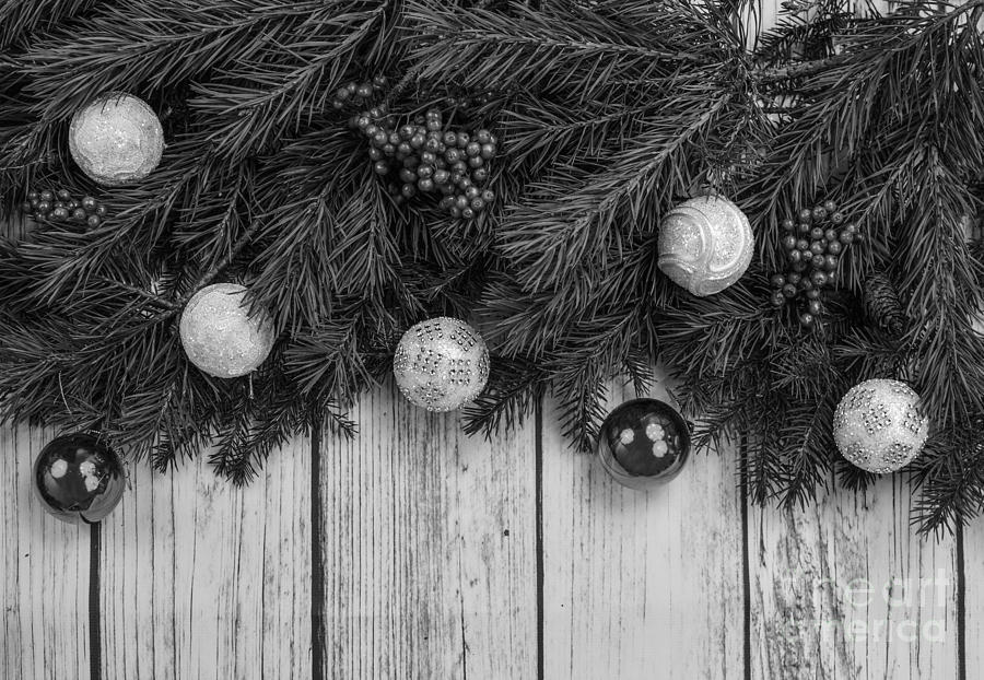 Christmas 4 by Jesse Watrous