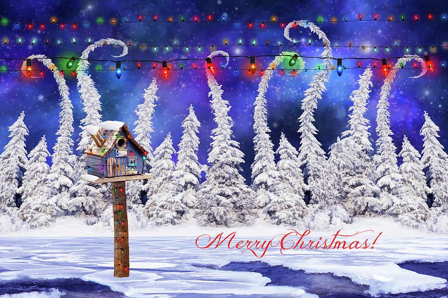 Christmas Digital Art - Christmas Card With Bird House by Mihaela Pater