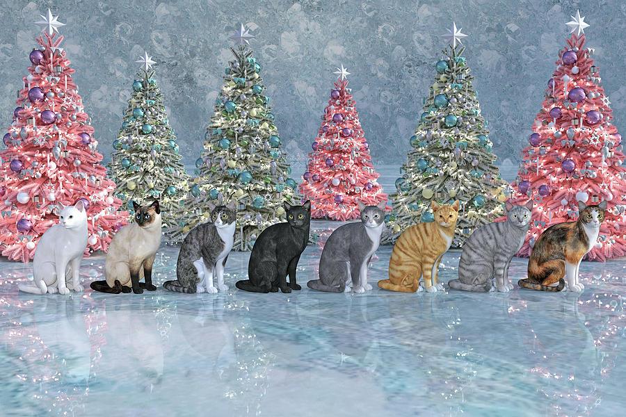 Cat Digital Art - Christmas Cats by Betsy Knapp