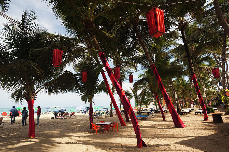 Christmas Decorations, Playa Cabarete Photograph by Walter Bibikow