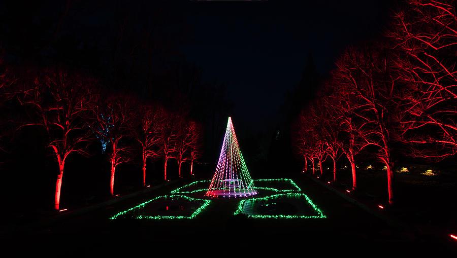 Christmas Lighting by Suguna Ganeshan