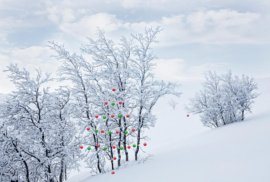 Christmas Ornaments In The Mountains Photograph by Per Breiehagen