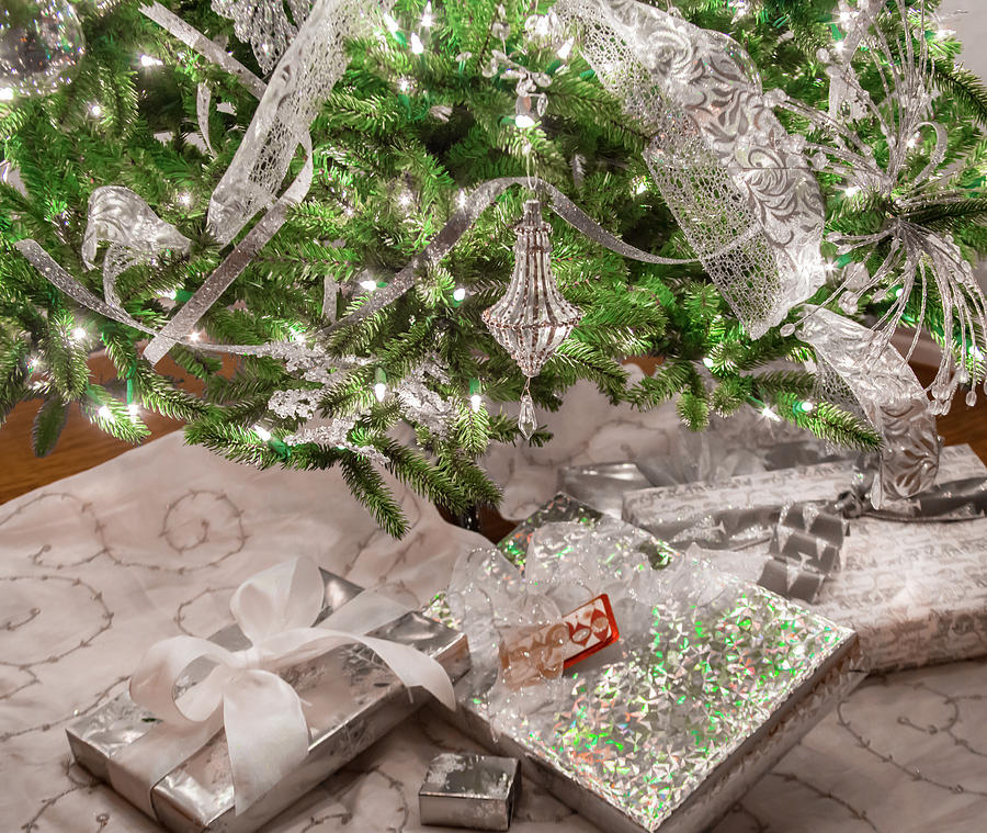 Christmas Presents Under The Tree Photograph By Terry Walsh