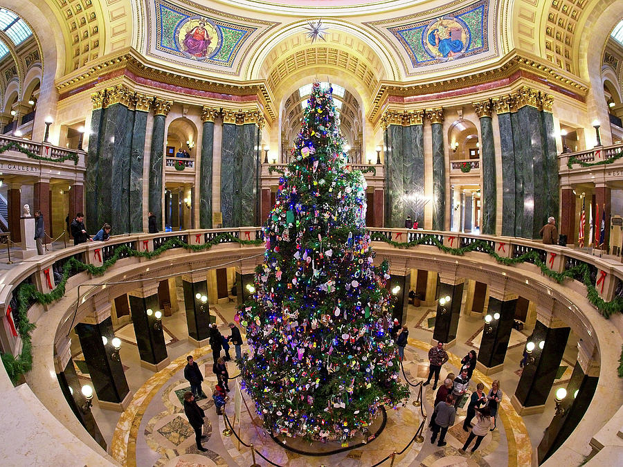Christmas Tree -Capitol - Madison - Wisconsin 1 by Steven Ralser