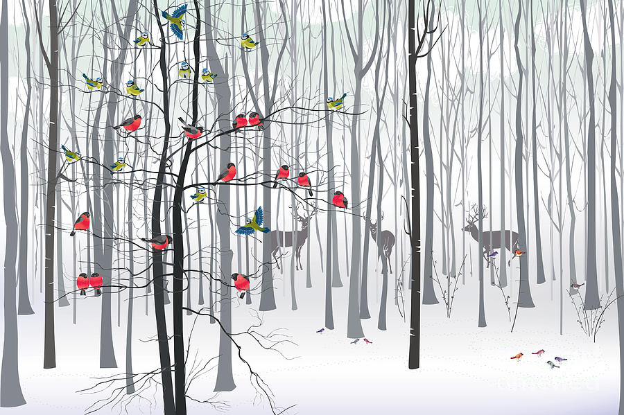 Feather Digital Art - Christmas Tree In The Forest by Fresher