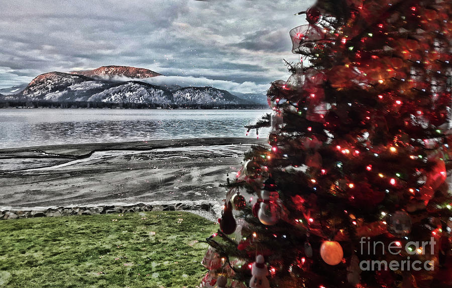 Christmas View by Vivian Martin