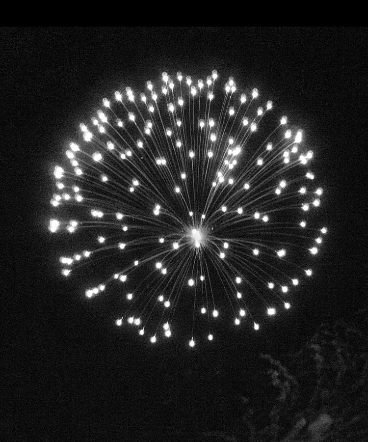 Chrysanthemum Pyrotechnic  by Bob Duncan
