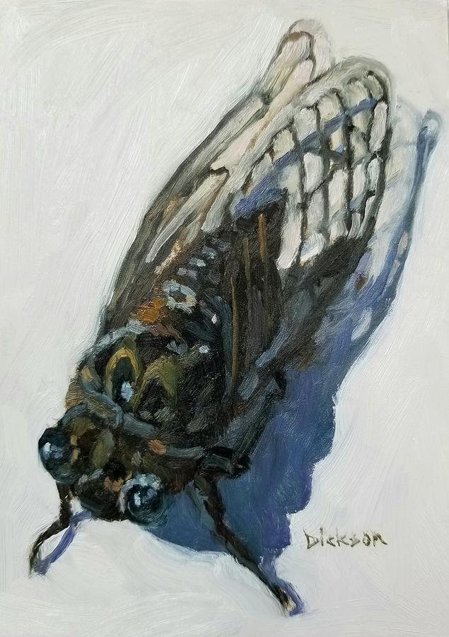 Cicada by Jeff Dickson