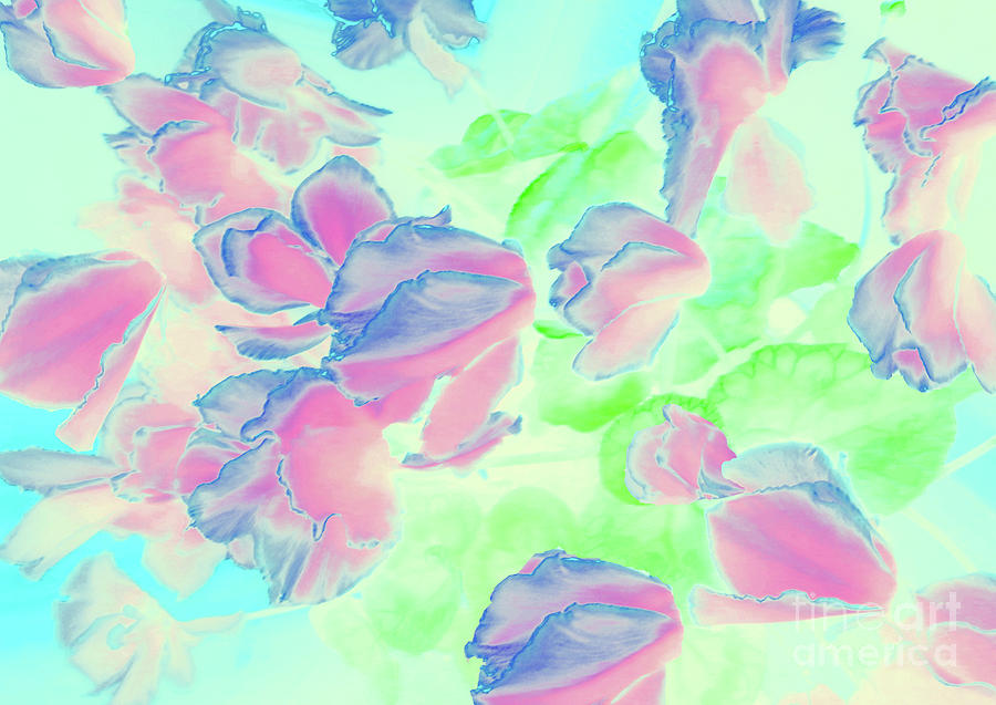 Ciclamen Garden Flower 3 by Cveti Dinkova
