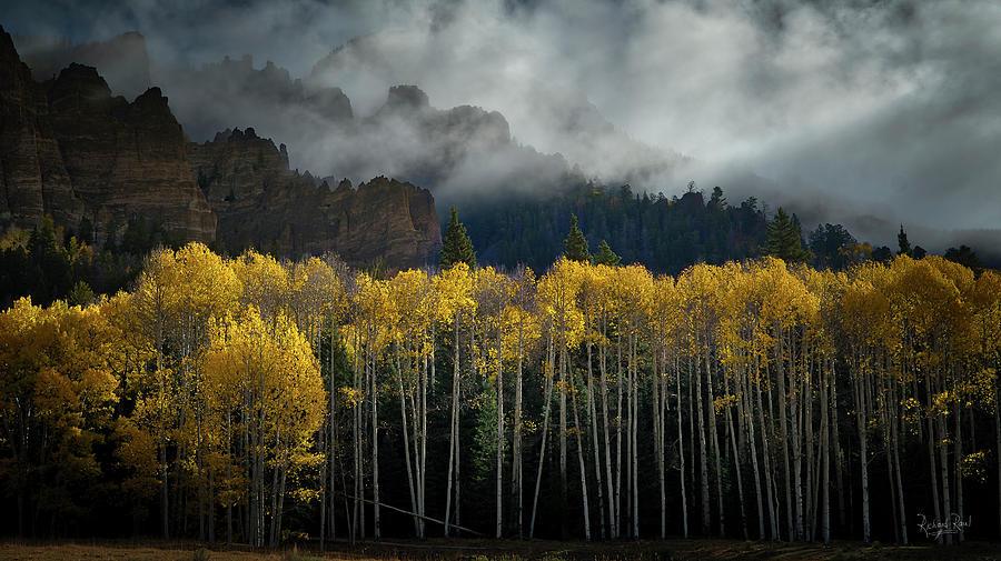 Cimarron Mist by Richard Raul Photography