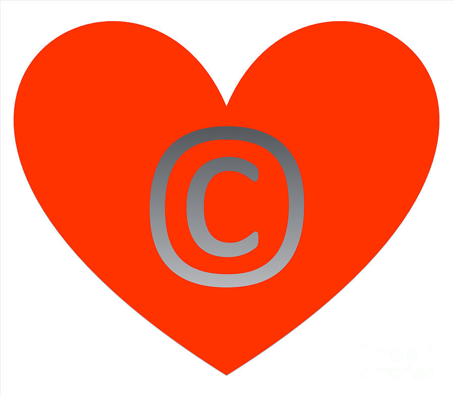 Circle C Orange by Catherine Lott