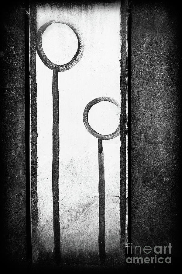 Circled Lines by Lori Dobbs