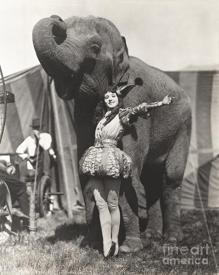 1920s Photograph - Circus Performer Posing With Elephant by Everett Collection