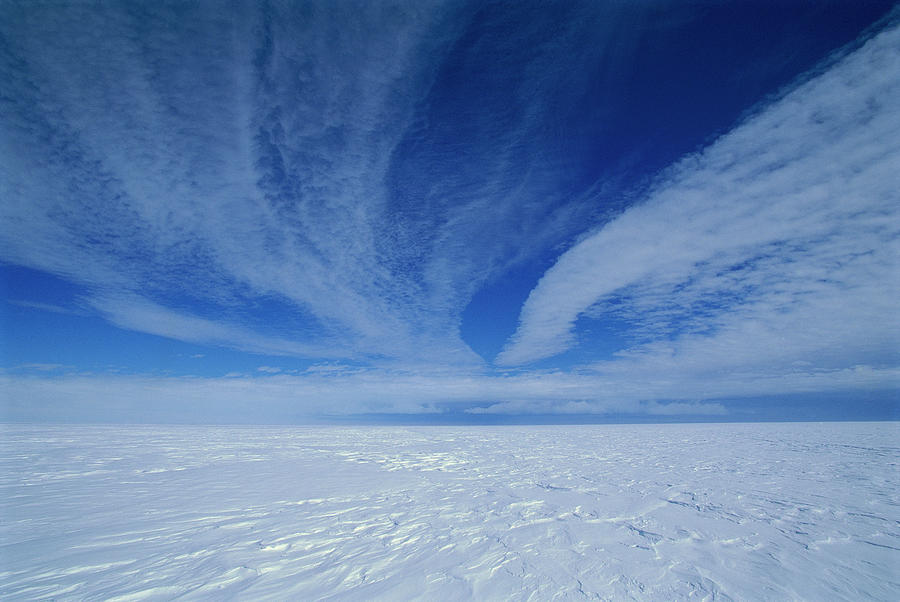 Cirrus Clouds Above Icy Plateau Photograph by Grant Dixon/ Hedgehog House/ Minden Pictures