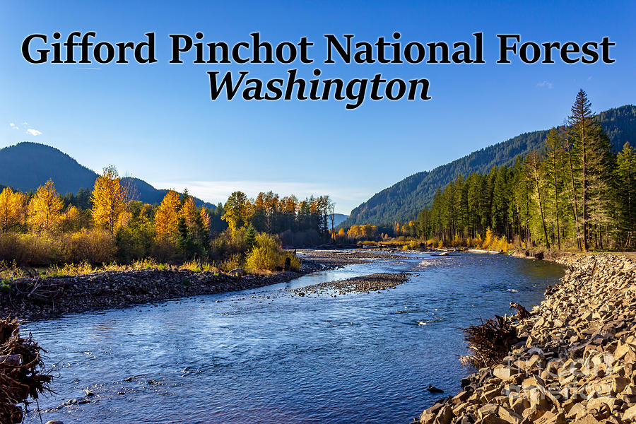 Cispus River Photograph - Cispus River In The Gifford Pinchot National Forest, Washington State by G Matthew Laughton