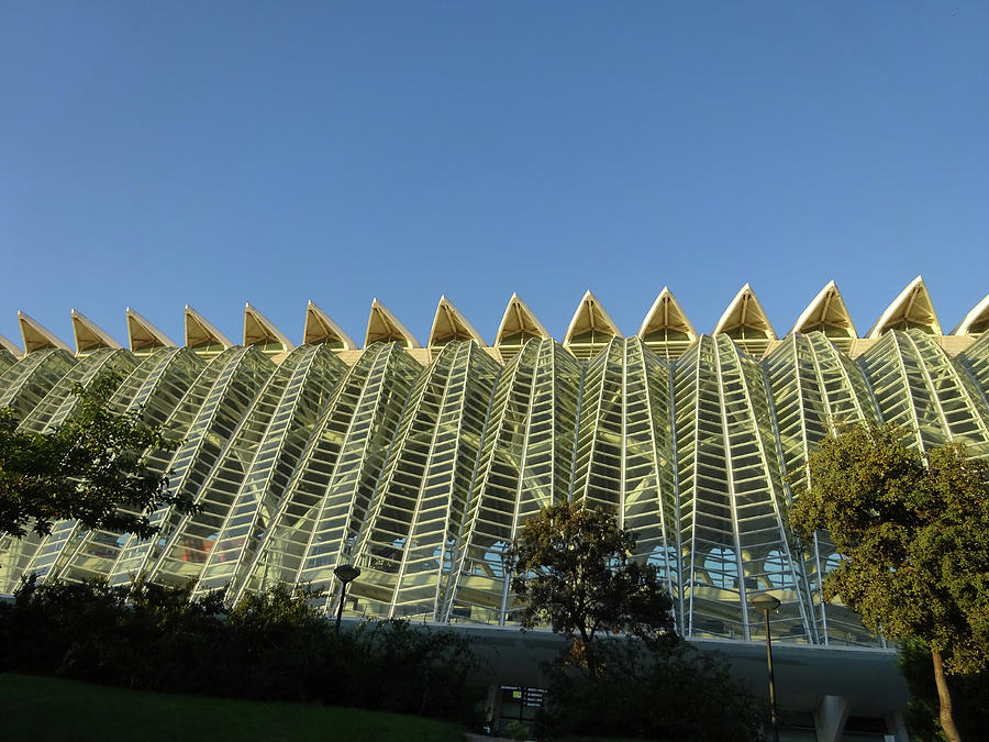 City Of Arts And Sciences  # 15 - Valencia Photograph
