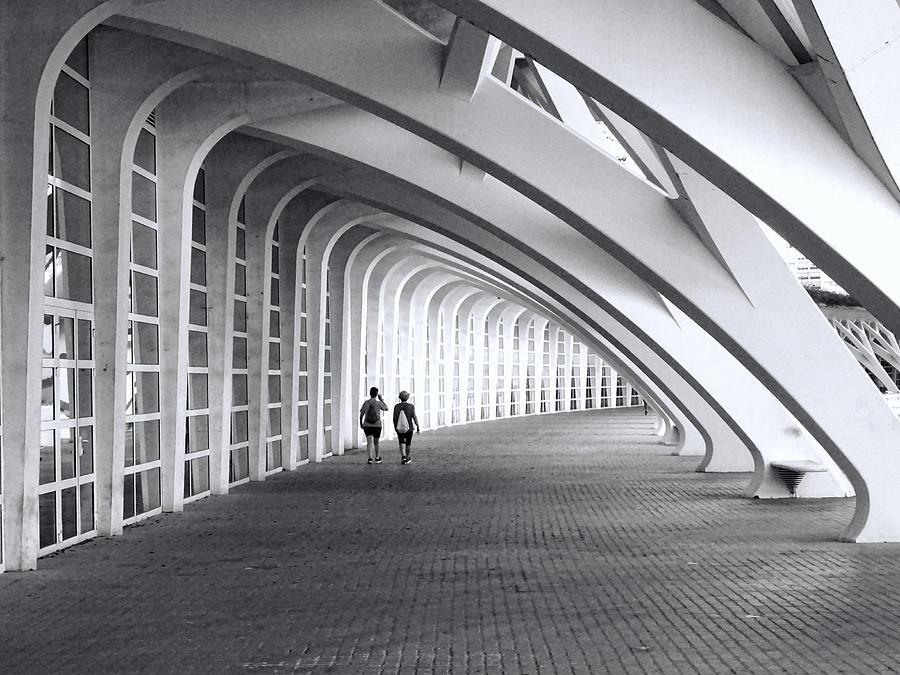 City Of Arts And Sciences  # 21 - Valencia Photograph