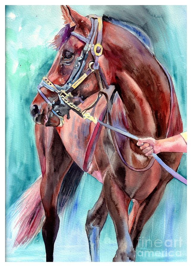 Watercolor Painting - Classical Horse Portrait by Suzann Sines
