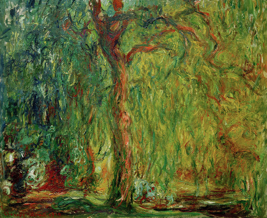 Claude Monet, Weeping Willow  Painting by AKG Images