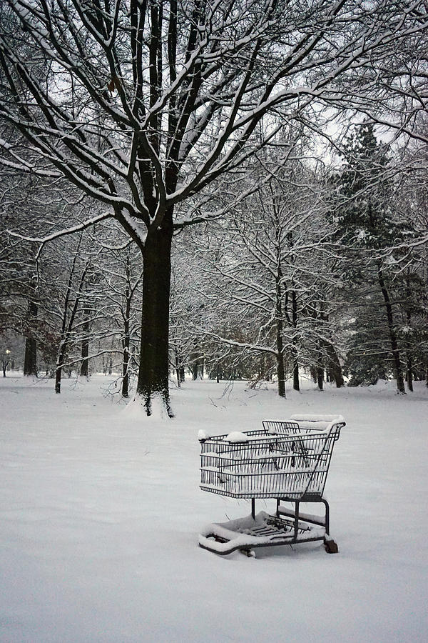 Snow Photograph - Clean Up On Aisle 4 by David Posey