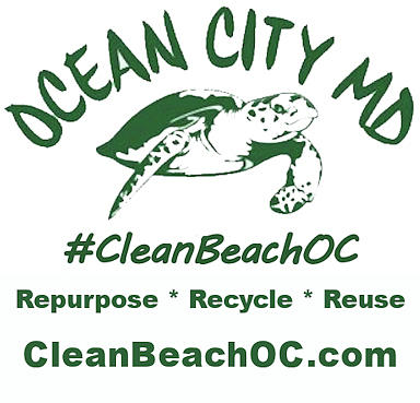 CleanBeachOC Poster by Robert Banach