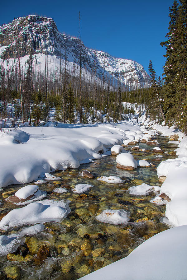 Clear Creek of Marble Canyon by Bill Cubitt
