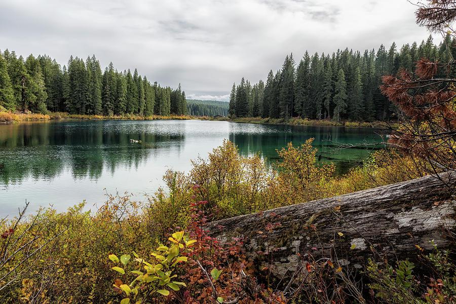 Clear Lake, Fall 2018, No. 3 by Belinda Greb