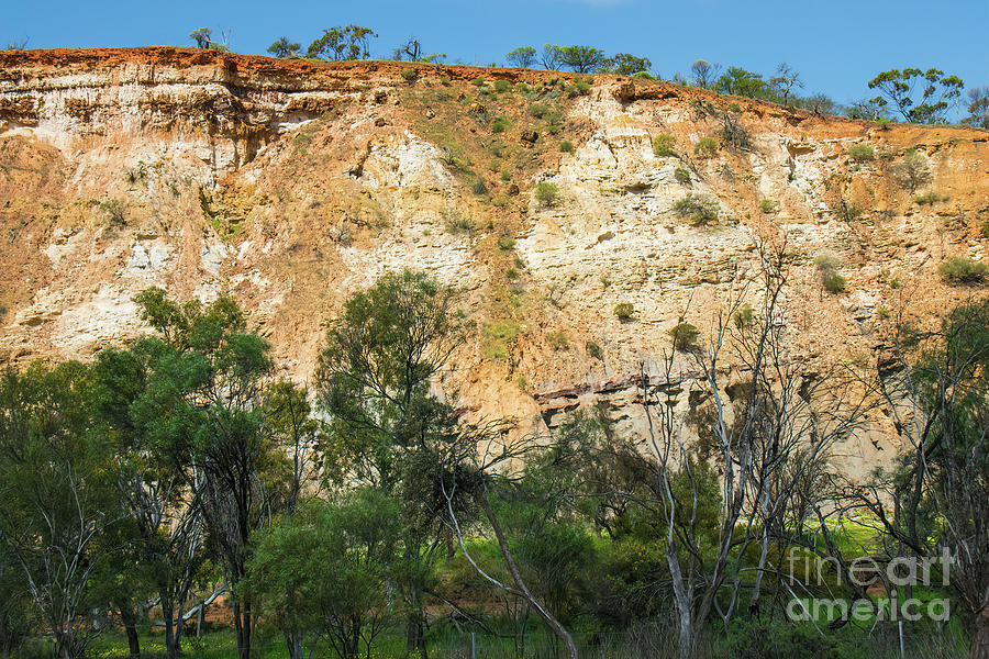 Cliff Face, Coalseam Conservation Park, Nangetty, Western Australia by Elaine Teague