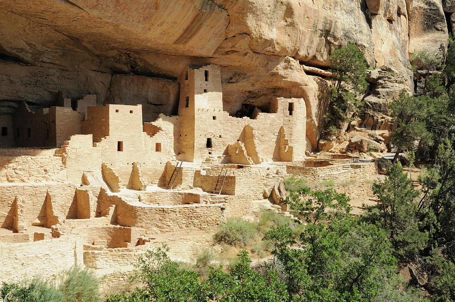 Cliff Palace In Mesa Verde, Colorado Photograph by Sshepard