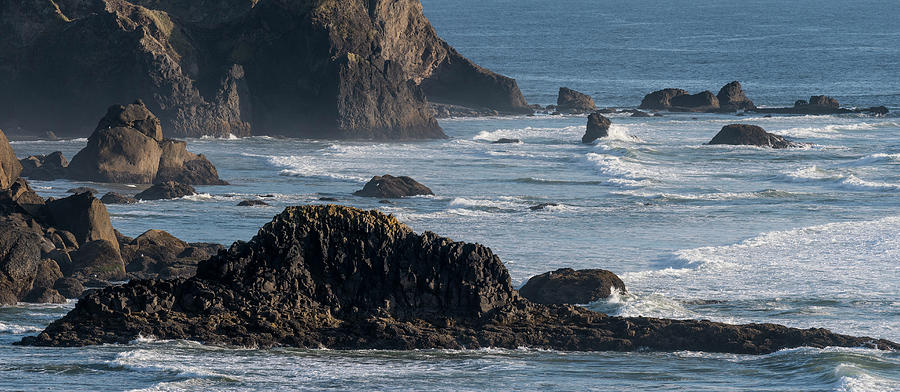 Cliffs of Ecola by Robert Potts