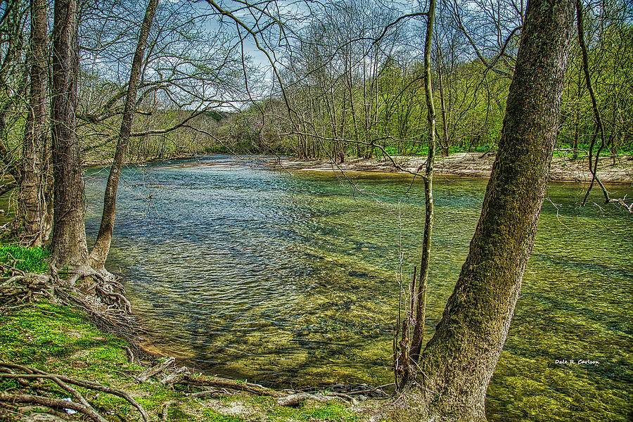 Clinch River Spring by Dale R Carlson