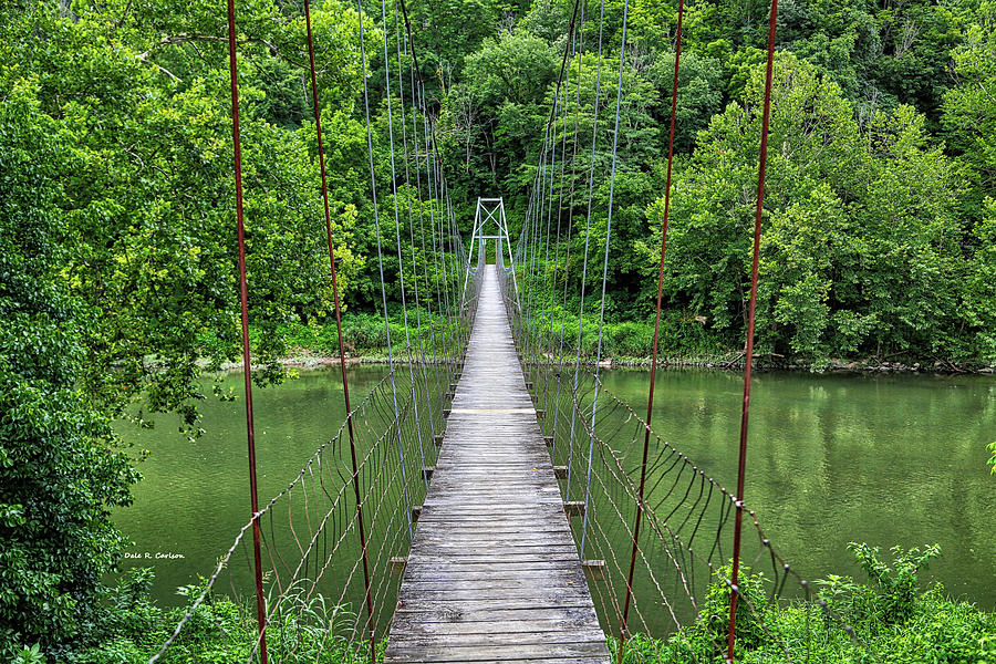 Clinch River Swinger by Dale R Carlson