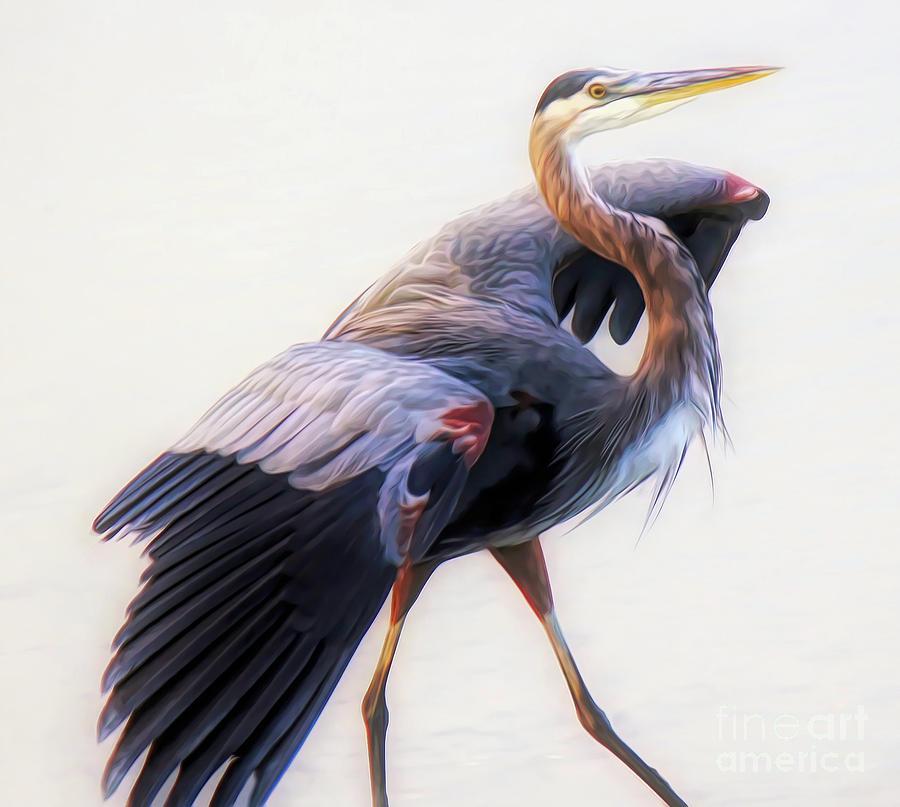 Close Up Heron by Paulette Thomas