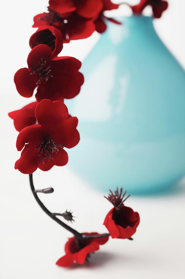 Close-up Of A Branch Of Red Flowers In Photograph by Jack Hollingsworth