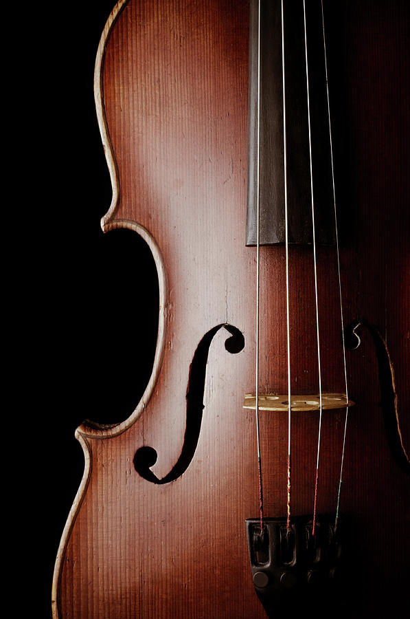 Close-up Of A Classic Violin Isolated Photograph by Nmaximova