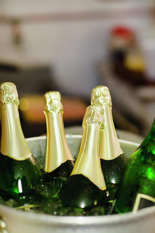 Close Up Of Bucket Of Champagne Photograph by Hybrid Images