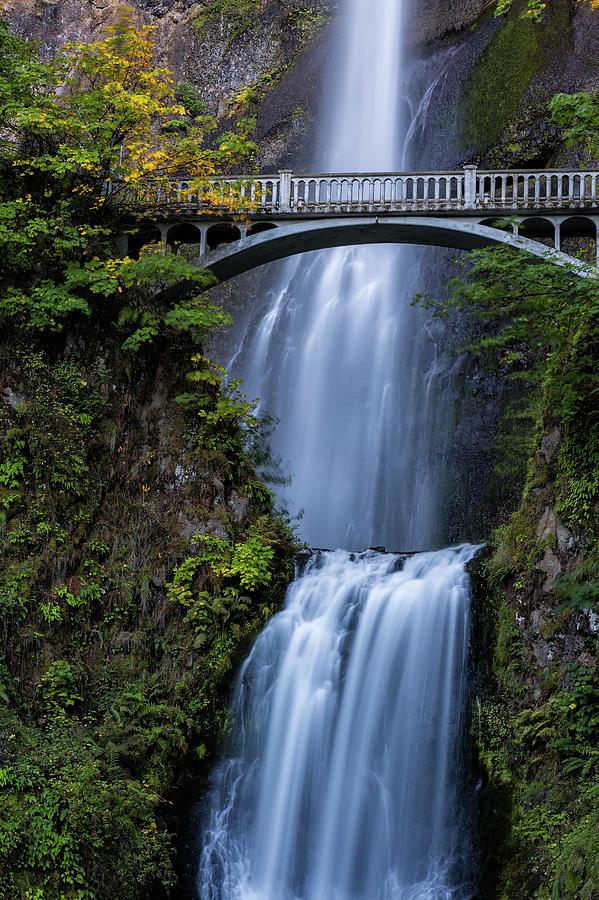 Close-up of Multnomah Falls and Benson Footbridge by Belinda Greb