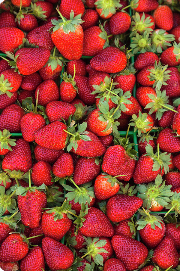Close Up Of Pile Of Strawberries Photograph by Juan Silva