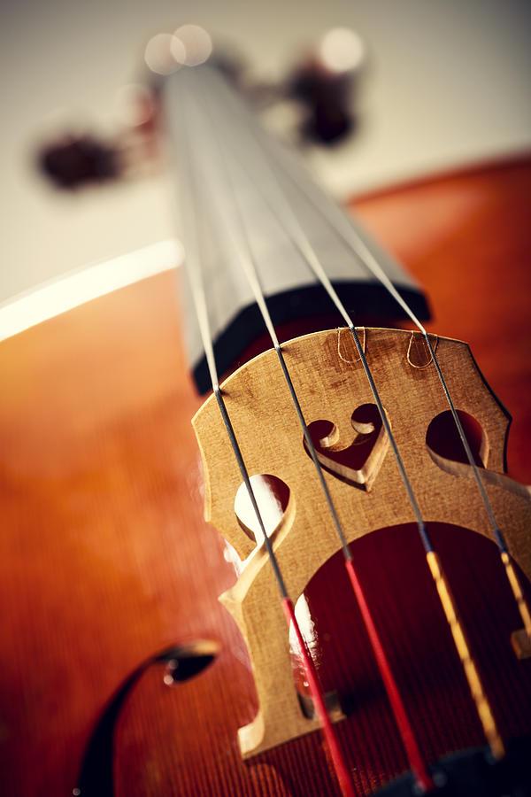 Close Up Shot Of Cello Bridge Photograph by Kativ