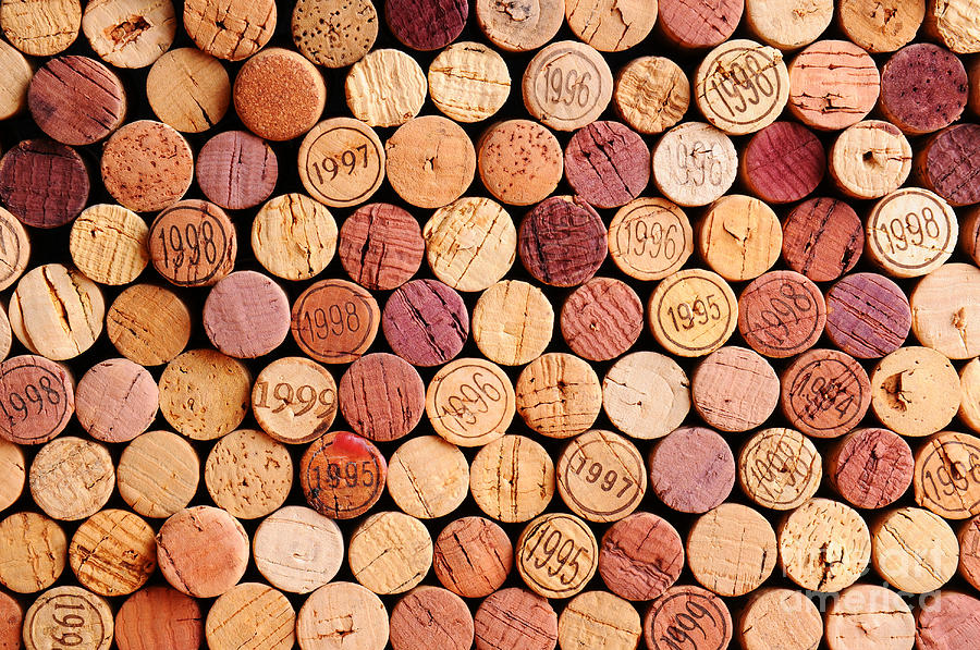 Date Photograph - Closeup Of A Wall Of Used Wine Corks. A by Steve Cukrov