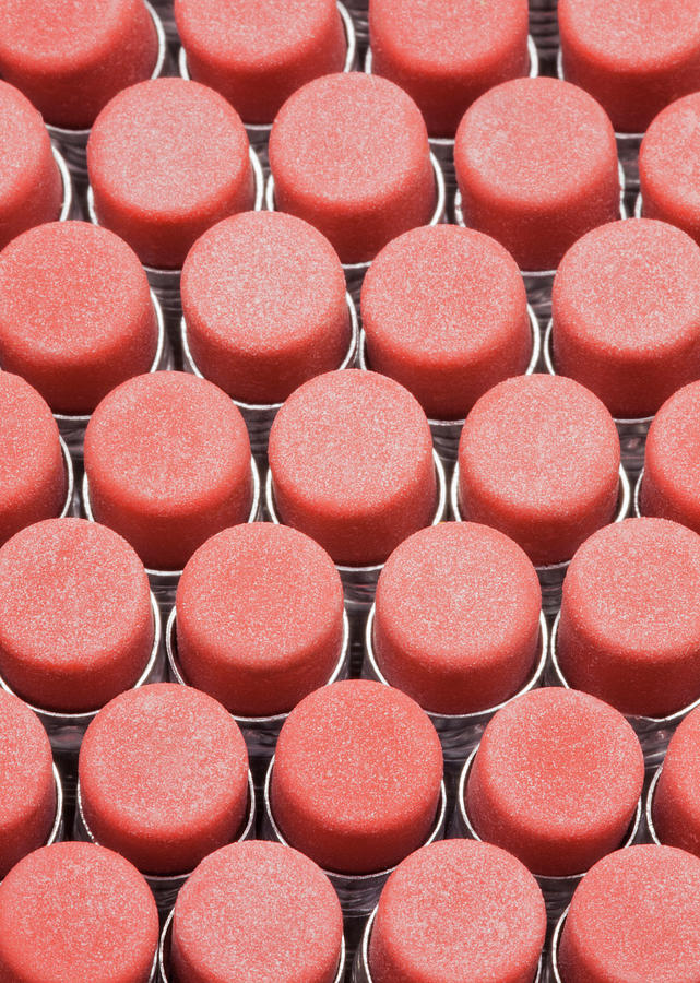 Closeup Of Pencil Erasers, From Above Photograph by Bryan Mullennix