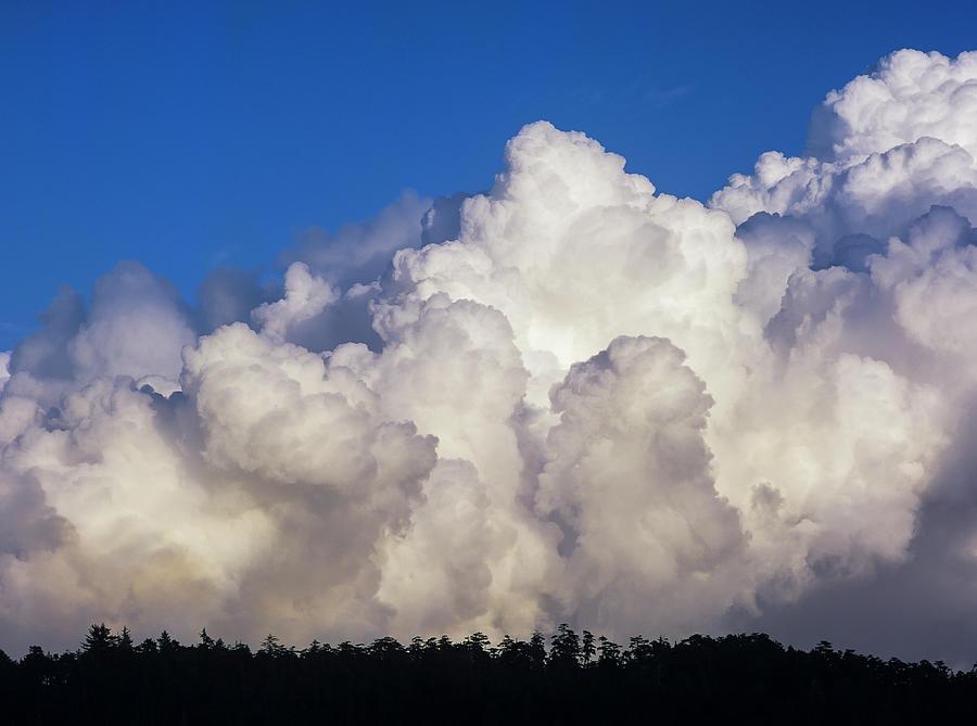 Cloud Build Up by Robert Potts