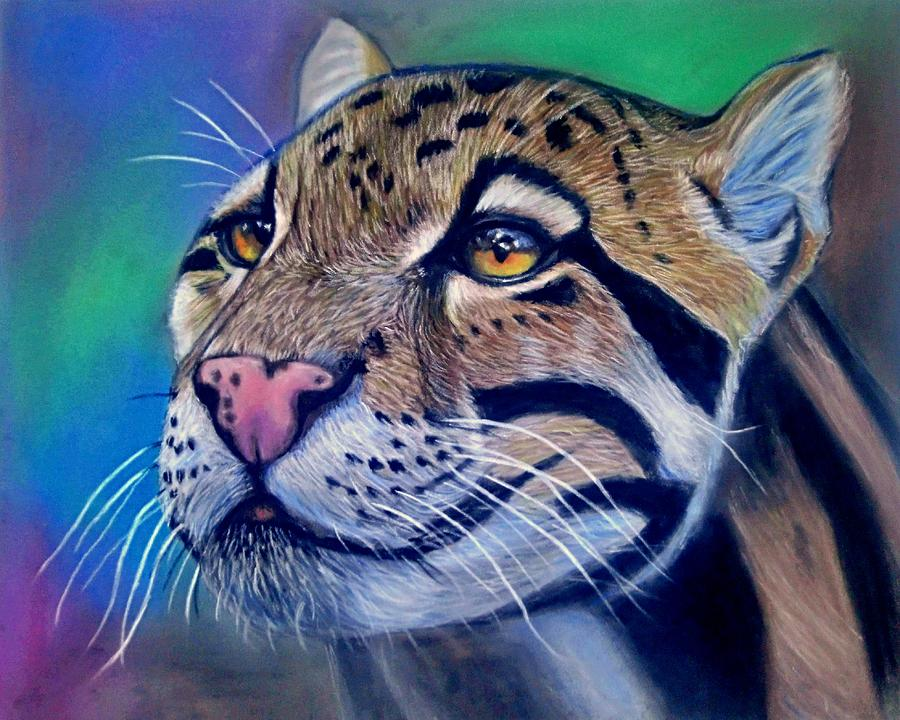 Clouded Leopard Pastel Drawing by Rachel Maytum Designs