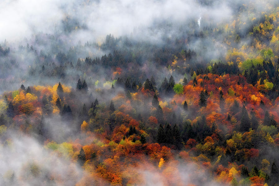 Clouds and fall colors by Roberto Pagani