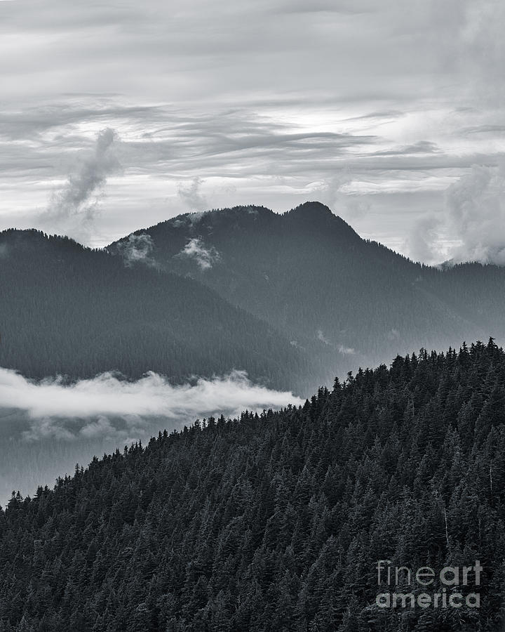 Clouds and Fog by Alma Danison