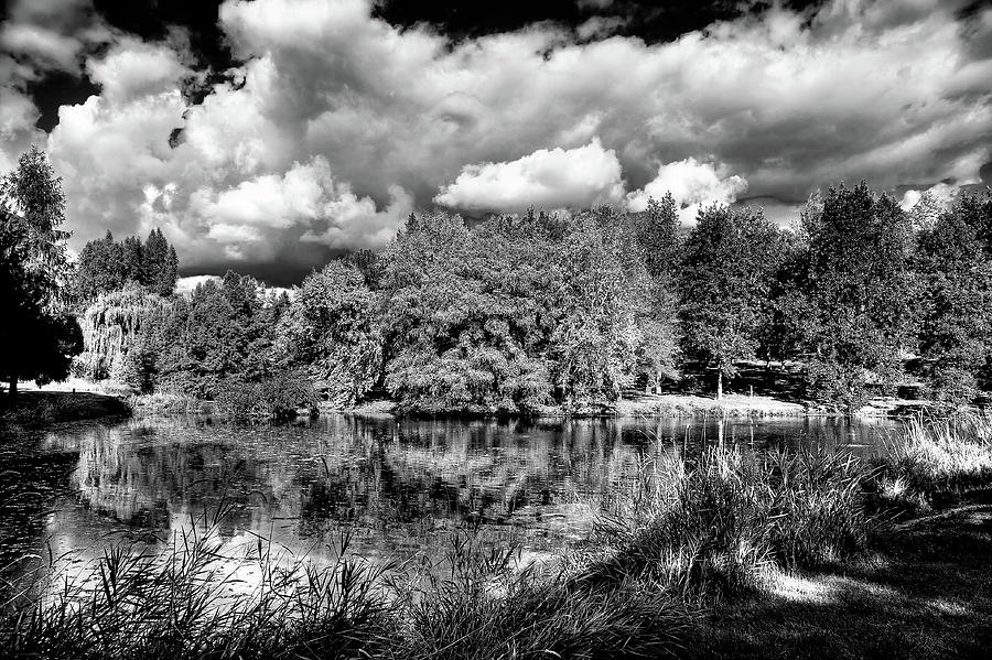 Clouds over the Arboretum by David Patterson