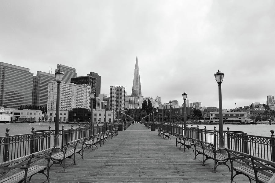 Cloudy Day in San Francisco by Alina Avanesian